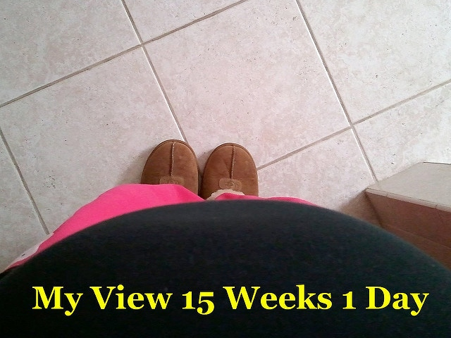 15th week of pregnancy