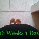 Sweet Baby 16 Weeks