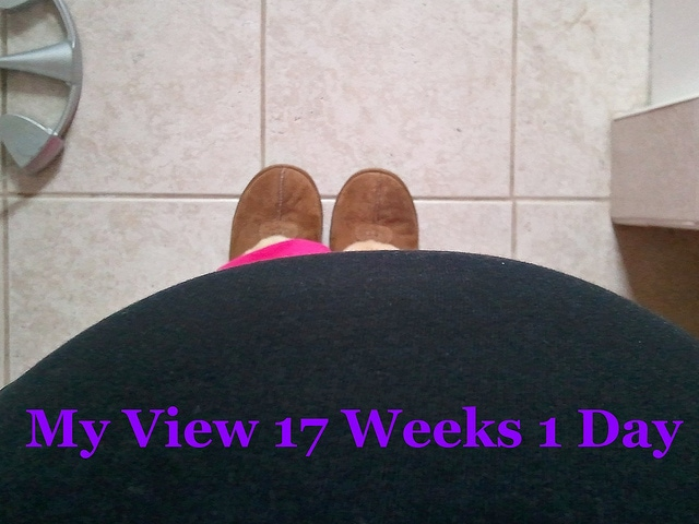 Pregnancy 17 Weeks 1 Day