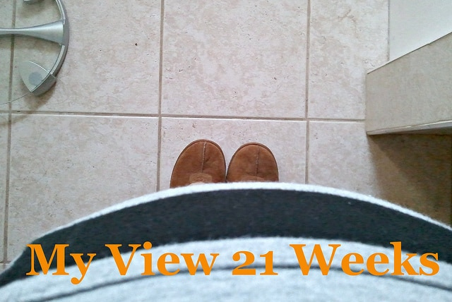 My View 21 Weeks