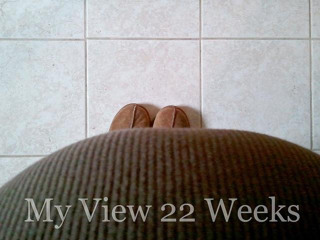 My View 22 Weeks