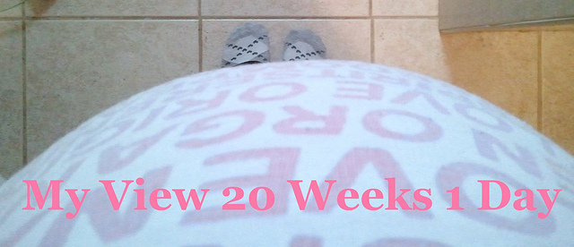 Pregnancy 20 Weeks 1 Day My View