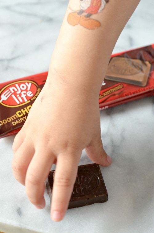 Allergy free chocolate enjoy life foods fpies food for Food bar hands