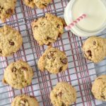 Chocolate Chip Scone, Cookies! | Soy Free