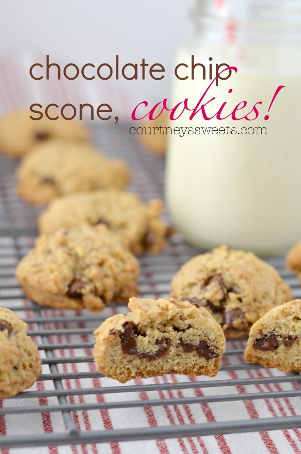Chocolate Chip Scone Cookies