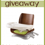 Summer Infant Bentwood Booster Seat Giveaway