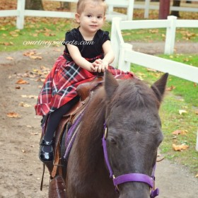 ironside farm pony rides