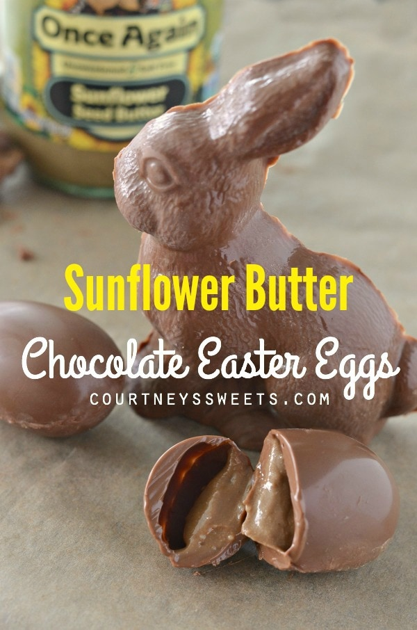 Chocolate Bunny for Allergy Friendly Easter