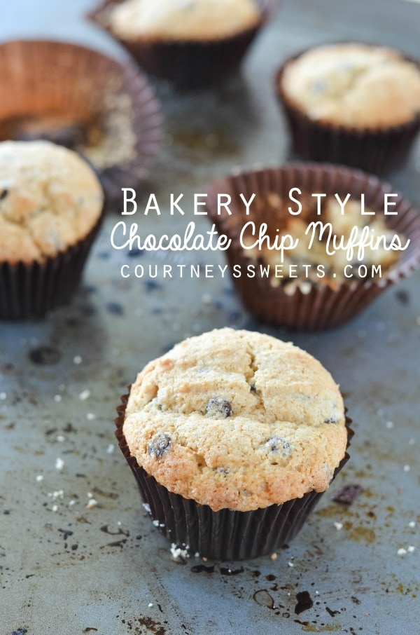 Bakery Style Chocolate Chip Muffins - Courtney's Sweets
