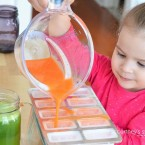 Kid Friendly Fruits and Veggies Carrot Ice Pops using Fresh Fruit and Vegetable Juice