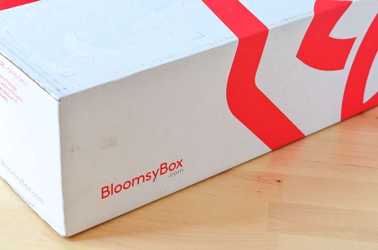 Fresh Flower Subscription Box - BloomsyBox