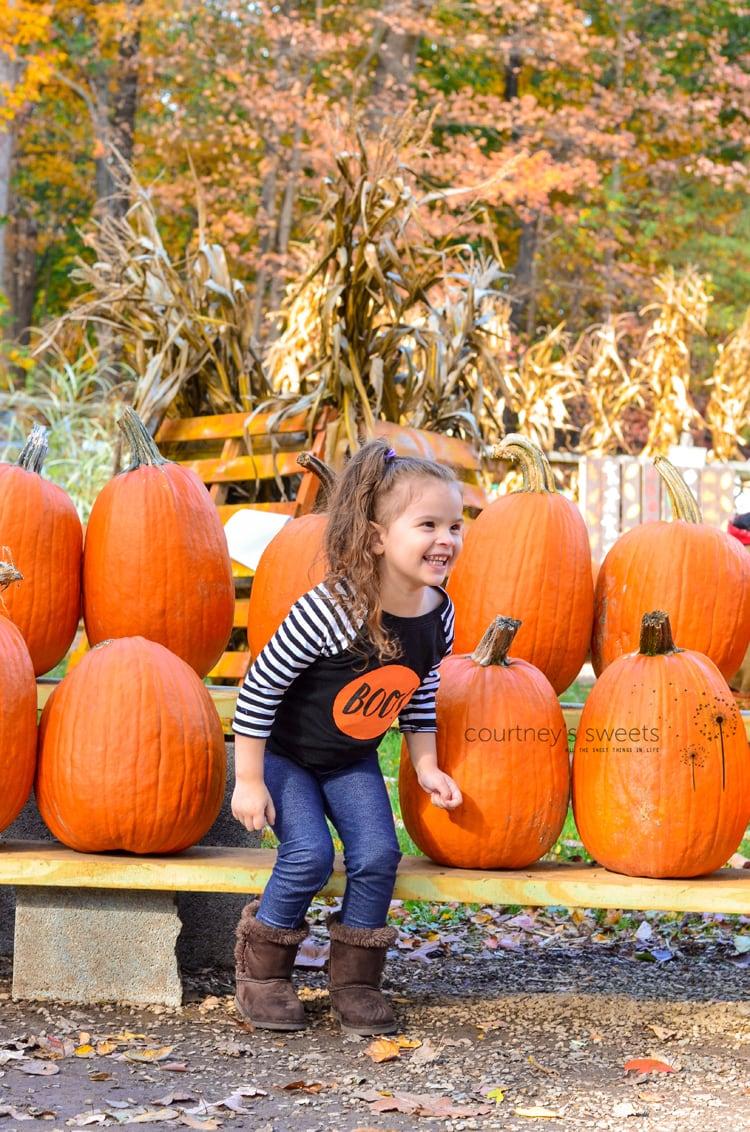 Pumpkin patch wyckoff nj post