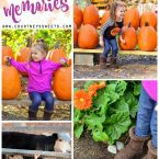 Family Fun at Abma's Farm in Wyckoff, NJ. We get messy and carry Wet Ones to clean our hands after the pumpkin patch and petting zoo. Clean hands, ready for apple cider and homemade donuts!