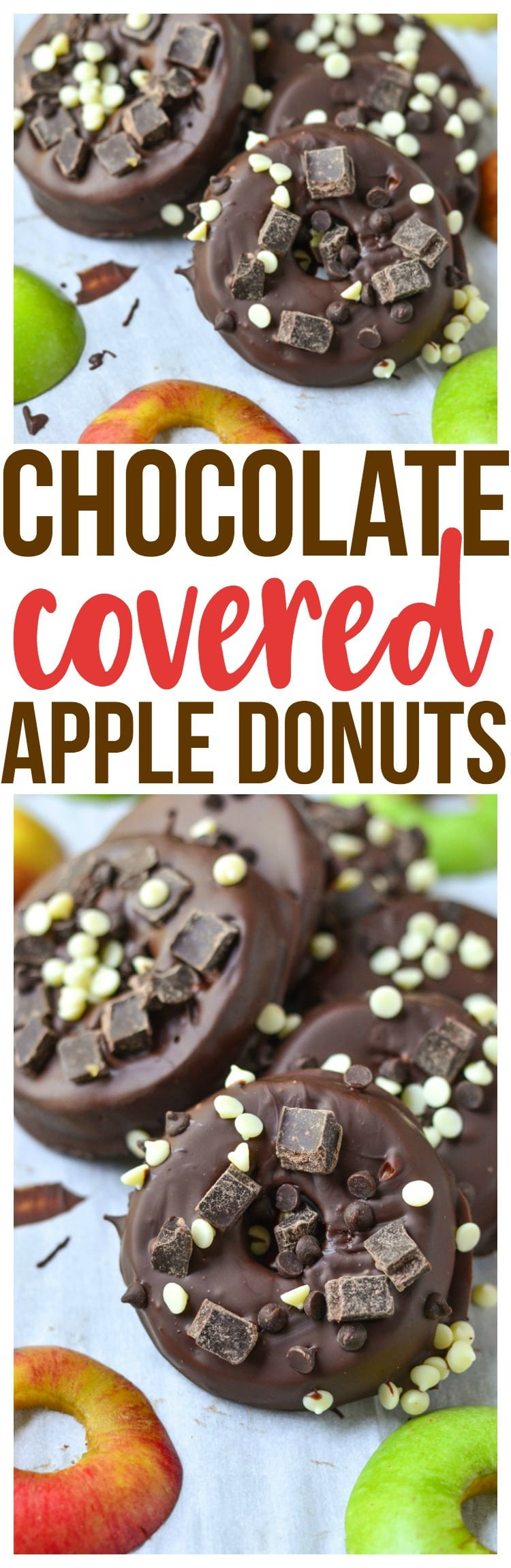 chocolate covered apple donuts simple and quick easy healthy snack ideas no bake fall treat fall season apple picking vegetarian recipe