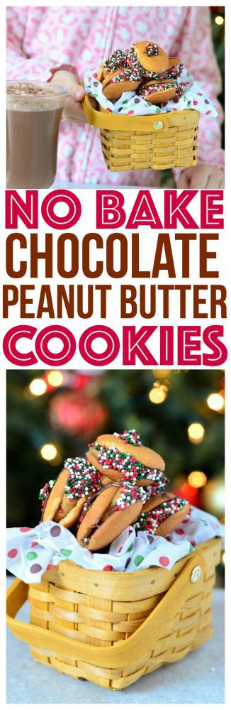 Try something new for Santa with our No Bake Chocolate Peanut Butter Cookies. They're a delicious treat for the holiday season!