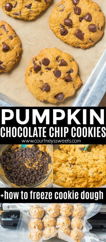 pumpkin chocolate chip cookies freezing dough