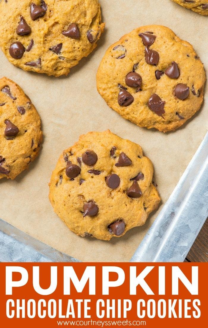 pumpkin chocolate chip cookies pinterest